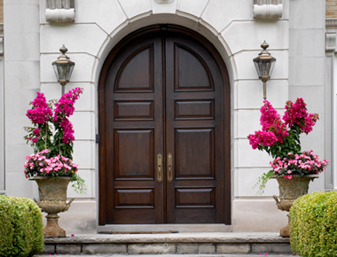 Doors for Main Entrance